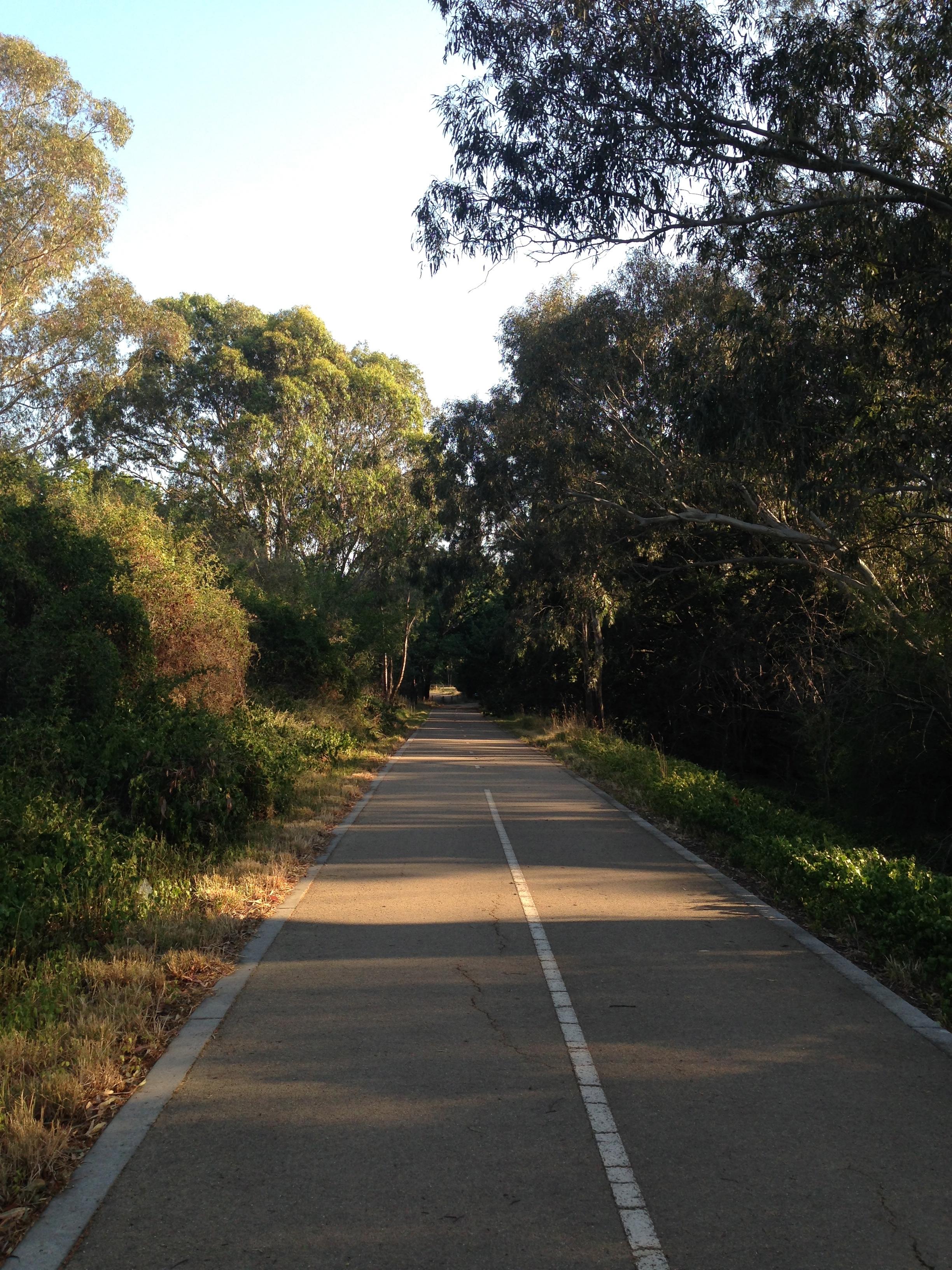 Main Yarra Trail, Yarra Flats Park, Melbourne.