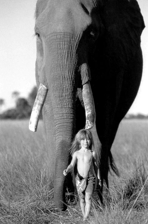 Tippi Degré via Pinterest.